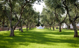 luxury wedding venue puglia